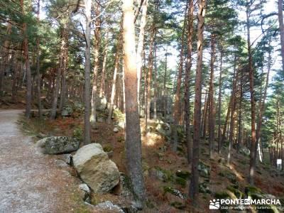 Sestil de Maillo - Mojonavalle; excursiones semana santa; senderismo viajes;viajes camino de santiag